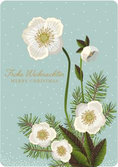 Postkarte Christrose - Frohe Weihnachten